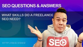 ▷ SEO Questions and Answers: What skills do a freelance SEO need? – SEO Video Show